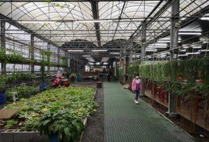 Master Guan's Leisure Farm